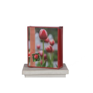Album FLOWER 300f 10x15 R